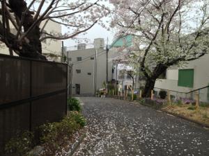 2013-03-25 12.31.01